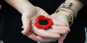 Crochet poppies bring hope to Vietnam vets