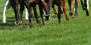 OPINION: Reining in violence on Cup day